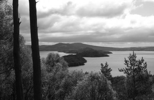 island drift blog 12